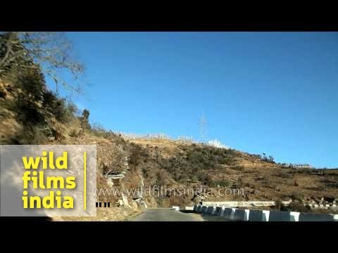 Road trip : Haa district to Chele La (Pass) in Bhutan