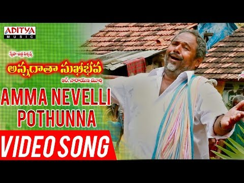 Amma Nevelli Pothunna Video Song | Annadata Sukhibhava Songs | R.Narayana Murthy