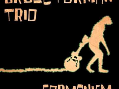 Bruce Forman Trio - Flamingo