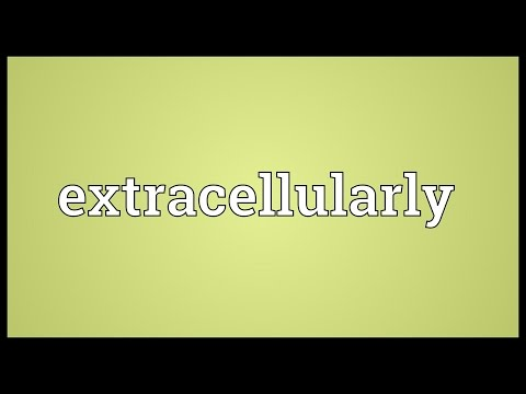 Header of extracellularly