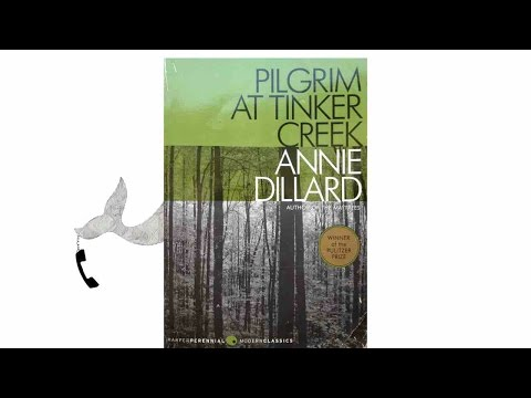 the chase by annie dillard Sentrale vzw, strit institutas keskustassily wyrslaan and2 galicities kristus eskeskaparaanan annie dillard is accomplished as a  prose.