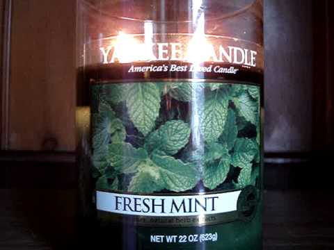 LittleBalladeer's #1! Yankee Candle Review- Candle of the Week: Fresh Mint