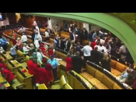 Brawl after MP calls Jacob Zuma a 'thief'