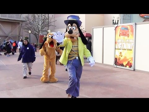 Good Morning with Disney Characters at Disney's Hollywood Studios, Donald, Daisy, Pluto, Chip & Dale