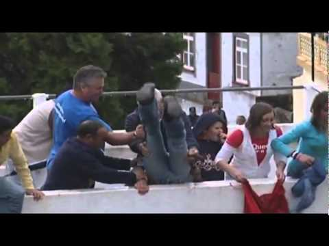 Bull Fight Fail - Funny Video video