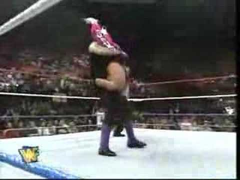 The Undertaker Vs Bret hitman Hart video