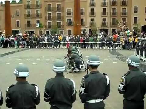 Policia Militar D.F.