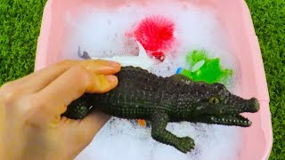 Learn Colors and Learn Sea Animals in Pink Pool Educational Video  For Kids