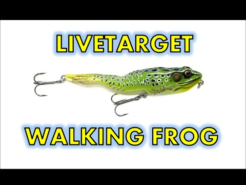 Koppers live target frog topwater fishing tips hat cam for Flair fishing rod