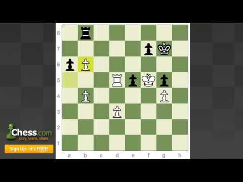 Sweet Chess Games: Polgar's Sharp Sword and Adams' True Technique