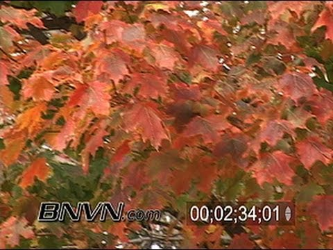 Fall Color Video Stock B-Roll Part 3