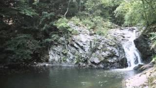 Watch Townes Van Zandt My Proud Mountains video