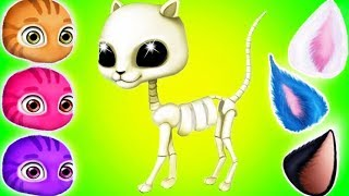 Cat Hair Salon Birthday Party - Play Kitty Haircut Care & Makeover Games For Girls