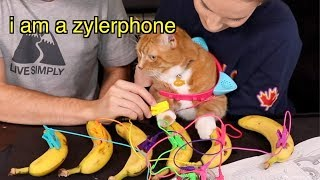 Do My Cats Conduct Electricity? (a feline experiment / banana outtakes)