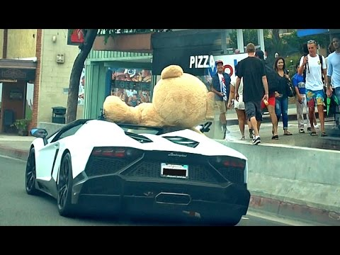 DRIVING LAMBORGHINI WITH HUGE BEAR!!! HOW WILL PEOPLE REACT TO THIS?