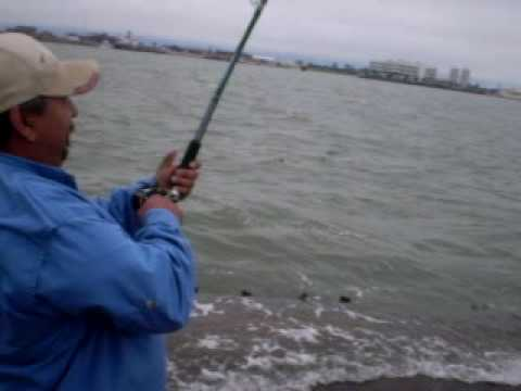 18lbs. Bull Red in Seawolf Park