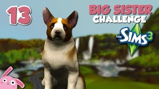 Malaspulgas se hace adulto! Big Sister Challenge | Los Sims 3 | Ep. 13