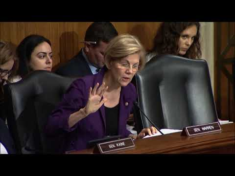 Senator Elizabeth Warren asks Anthem VP about the ACA