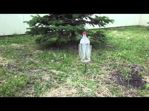 Как из пластиковой бутылки сделать отпугиватель от кротов своими руками 73