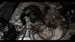 Watch Subliminal Code Muerto En Vida video
