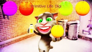Talking Tom And Friends | Tomcat 's Video Funny Animals 2018 Episode 2