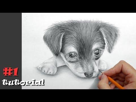 Нарисовать собаку на бумаге