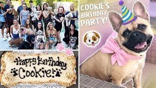 My Dog's EPIC Birthday Party!!!!
