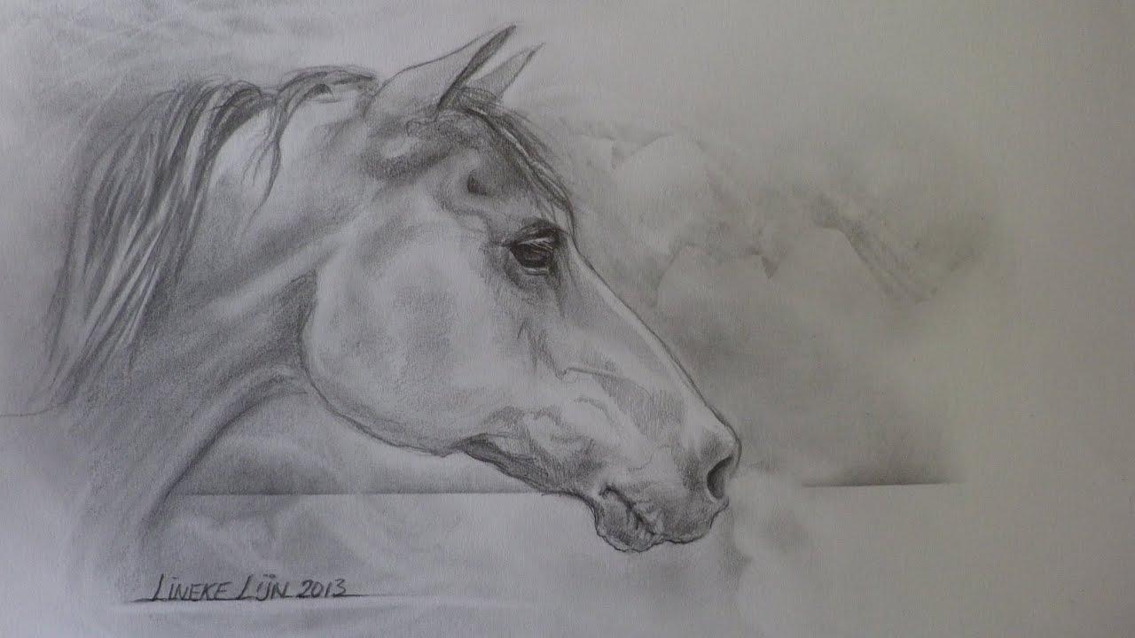 Hoe Teken Je Een Paardenhoofd De Schaduwen Youtube