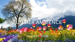 Nature Sounds Relaxing Nature Sound Of Summer Ambience No Music