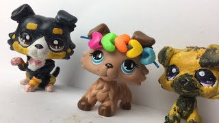 i made an lps collie?!?! all my lps customs