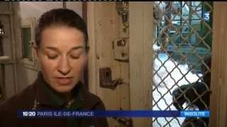 Ménagerie - Paris face cachée - JT France 3 du 29 janv 2015