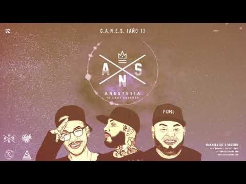 0 - Anestesia - C.A.N.E.S.