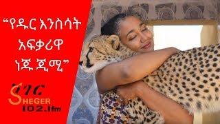 Ethiopia Sheger /FM  Mezenagna / Neju Jimi Seied