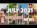 JULY 2021 Disneyland NEWS   95% Magic Back!
