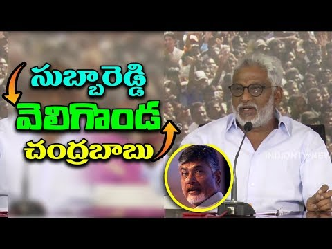 YCP Ex MP YV Subba Reddy Slams On AP CM Chandrababu Over Veligonda Project | mana aksharam