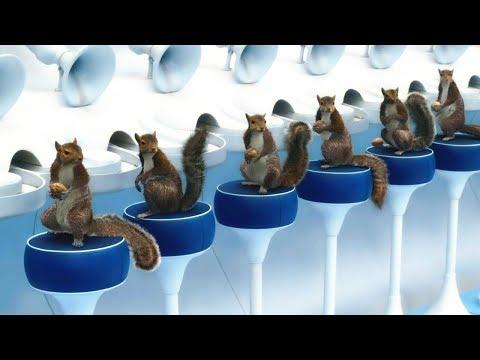 這家工廠雇傭100隻松鼠來剝堅果,效率比機器高出3倍,收益翻番!