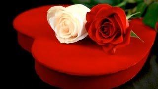 Sweet Baby - Stanley Clarke & George Duke (Lyrics) HD