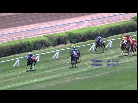 Vidéo de la course PMU PREMIO VICIOUS BOY