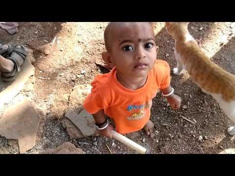 Feeding Cats At Khandeshwari Slums Asif