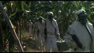 Contamination (1980) - Trailer