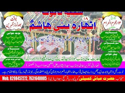 Shabeeh E Taboot 18 Bani Hashim A.s. Gopalpur