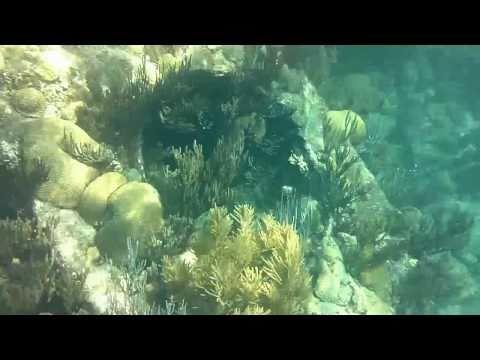 Shipwreck off Bermuda Coast