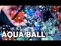 Satisfying ASMR | Aqua Ball Crushing | guaranteed tingle | 팅글보장 | 개구리알
