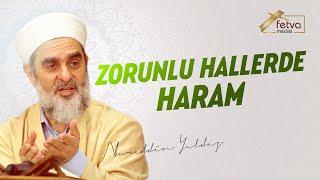 Zorunlu Hallerde Haram - Nureddin Yıldız - fetvameclisi.com