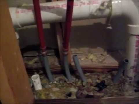 Shower Drain Seal Repair