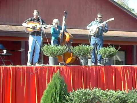 Double Banjo Blues - The Morris Brothers Bluegrass Band