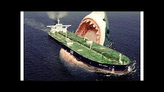 TOP 25 Ultimate Animals You Won't Believe Existed!