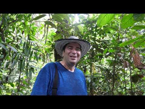 Urwald Coaching mit Gerardo Laempe