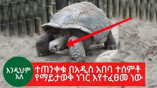 Ethiopia | Be careful There is something unknown happening in Addis Ababa