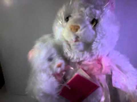 Mom & Son Cat (4).3gp video